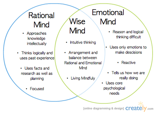 emotional mind-rational mind-wise mind