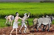 व्यवसायिक कृषि प्रणालीमा जानुपर्छ : मन्त्री साह