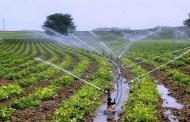 उत्पादन बढाउन कृषि औजारको प्रयोग