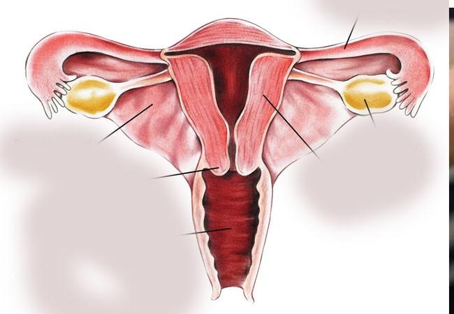 ग्रामीण भेगका अधिकांश महिलामा स्तन र पाठेघरको क्यान्सर