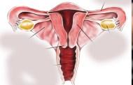 दुईसय चारजना महिलाको पाठेघरको मुखको क्यान्सर परीक्षण