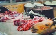 अधिकांस मासु पसलमा फोहर र झिँगा, सेवाग्राहीमा रोगको त्रास