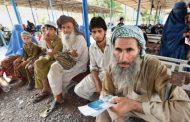 सोह्र हजार ६६३ अफगान शरणार्थी घर फर्के
