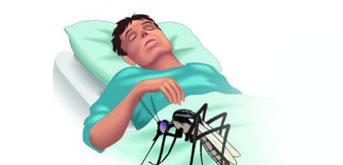 मलेरियाका चार बिरामी फेला