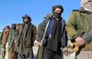 तालिबानका जिल्ला प्रमुखसहित १७ जनाको मृत्यु