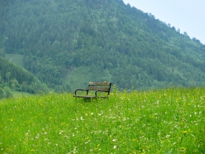 bench in a meadow for How to Take a Break From Managing the Universe post from Holy in the Daily
