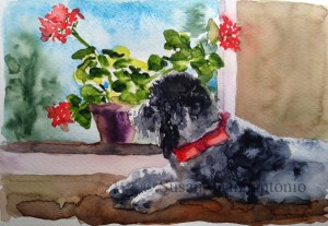 Who's Walking By? watercolor