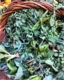 Preboggion, the wild herb mixture used in Liguria to stuff ravioli and vegetable tarts.