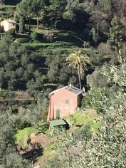 The Monte di Portofino