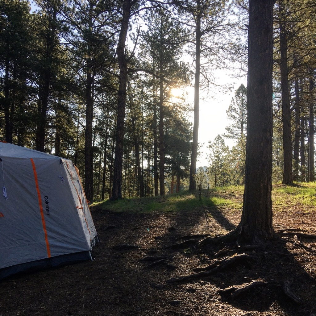 The Professor Goes West//Day Two//Camping with Little Ones