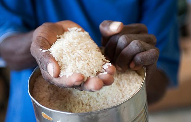 Hands in Rice