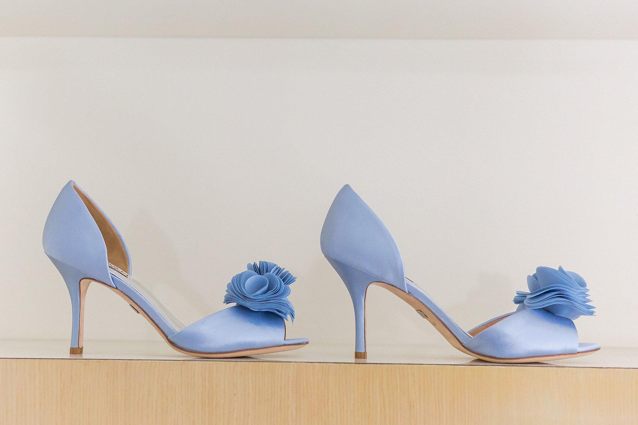 Bride Wedding Shoe