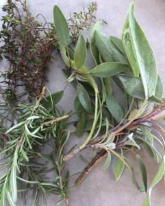 late-herbs