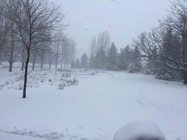 snow-november-18-2016