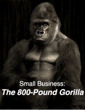 small biz 800 pound gorilla