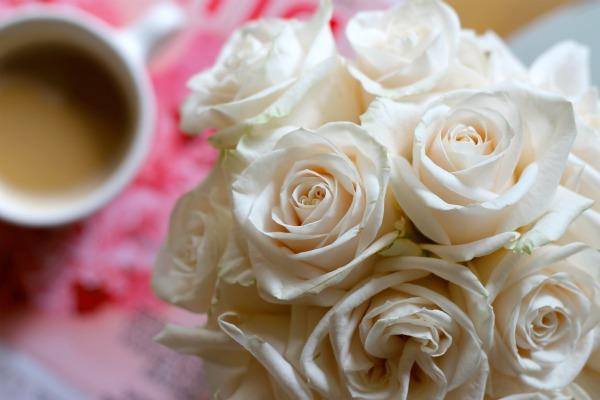 IMG_0819_roses