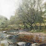 A painting of a Dartmoor stream by Glen Smith