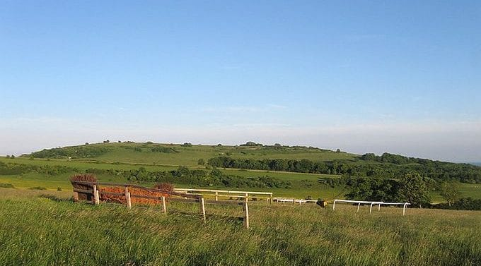 Findon Gallops, West Sussex