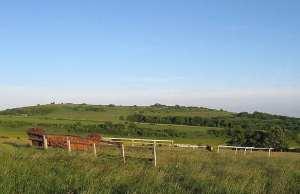 Findon Gallops, West Sussex