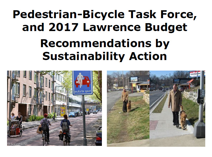 Pedestrian-Bicycle Task Force 2017