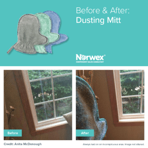 dust mitt cleans screens