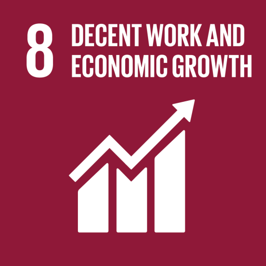 United Nations Sustainable Development Goal 08