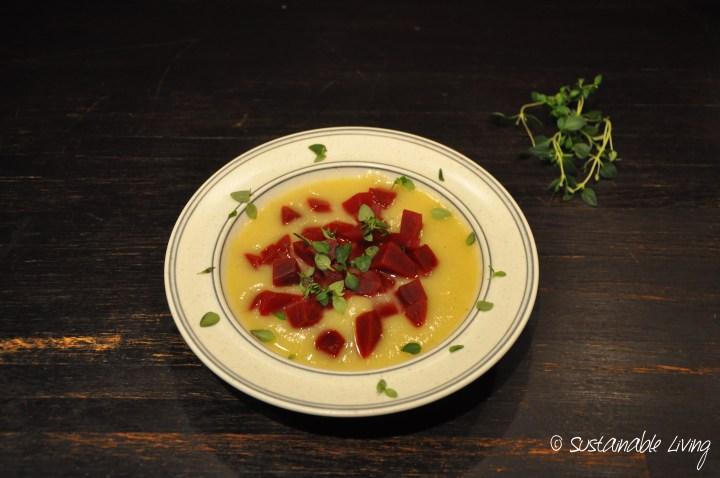veg soppa