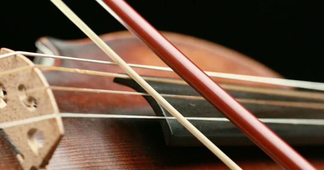 violin player closeup