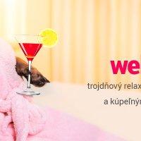Hlasujte v súťaži ShopRoku a vyhrajte trojdňový luxusný relaxačný pobyt pre dve osoby