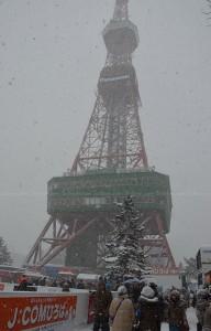 Sapporo Snow Festival  2013 (3)