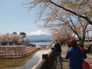 Kogamasao Memorial Park