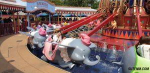 ช้างบินดัมโบ้