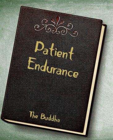 book Patient Endurance