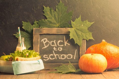 61554995 - autumn still life with chalkboard, lunchbox and pumpkins on dark background