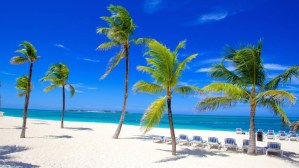 No matter where you choose to stay in Nassau, you'll love the fabulous beaches