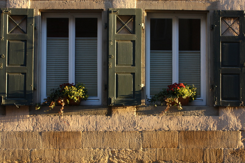 Tübingen, Haus mit Fensterläden und Blumen in der Neckarhalde