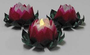 Lotus bloem drietal