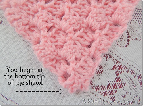 Begin at the Tip of the Shawl
