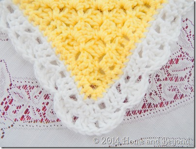 White Border of Bit Jazzier Shawl