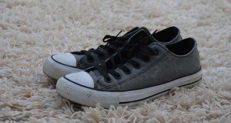 Grey-Chucks