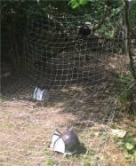 Adventure Bow Club Parcour 002 Riesenspinnen im Netz