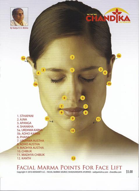 SVA Cafe #3 Non-surgical Marma Face-lift Program AUDIO&PDF- May 22 2014