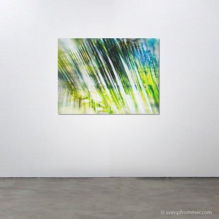 evergreen_rooms6