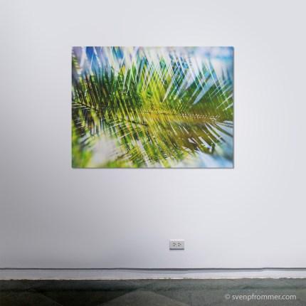 evergreen_rooms9