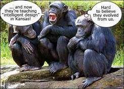intelligent_design1.jpg
