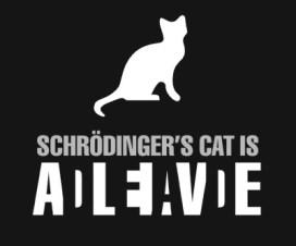 Ervin Šredinger i najpoznatija mačka 2