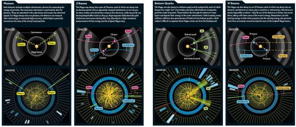 Slika dana: Kako je detektovan Higs [08.10.2013.]