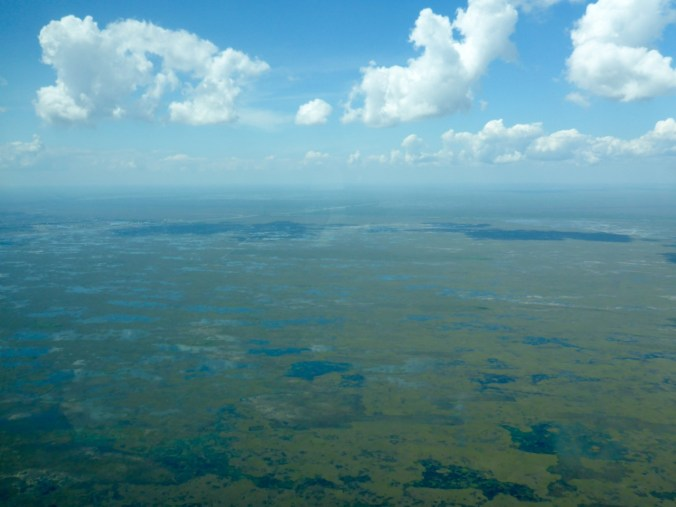 Everglades, doing a very passable impression of the Okavango Delta in Botswana.