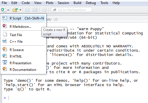 svm tutorial : create r script