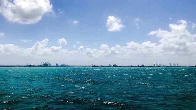 Cranes off the coast of Colon, Panama